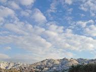 今年4回目の雪景色 (2013.2.20)