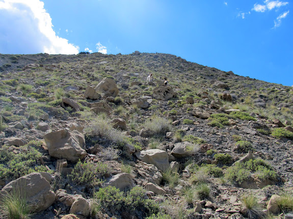 Short but steep hike up this rocky hillside