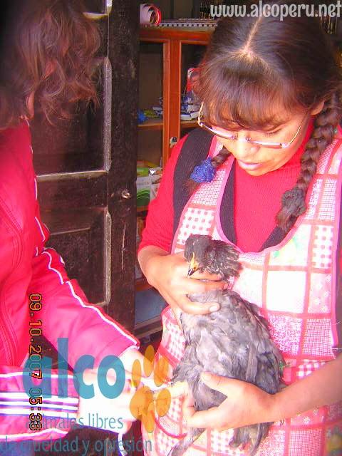 Asistencia Huancavelica por terremoto 2007 (13)