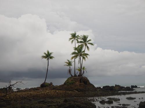 Costa Rica part 3: Corcovado