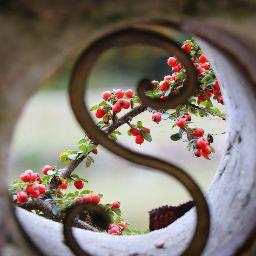 Swarna Prabha Photo 12