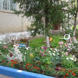 Татьяна. Наш двор состоит из трех домов. Мы очень хотим, чтобы он был красивый и уютный и стараемся воплотить это в жизнь.