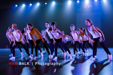 Han Balk Voorster Dansdag 2016-3675-2.jpg