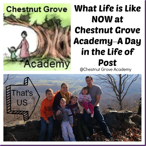 A day in the life Chestnut Grove Academy