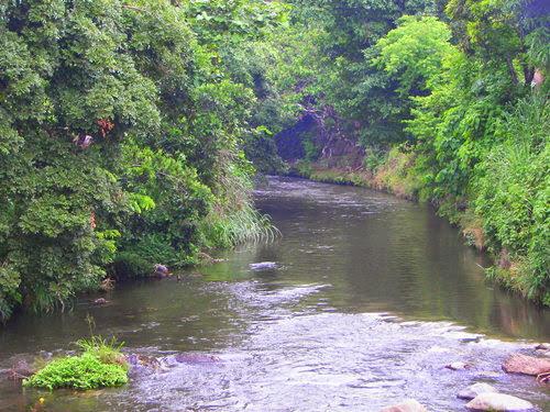 Río Sensunapán, en Sonsonate