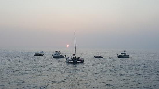 boats (2)