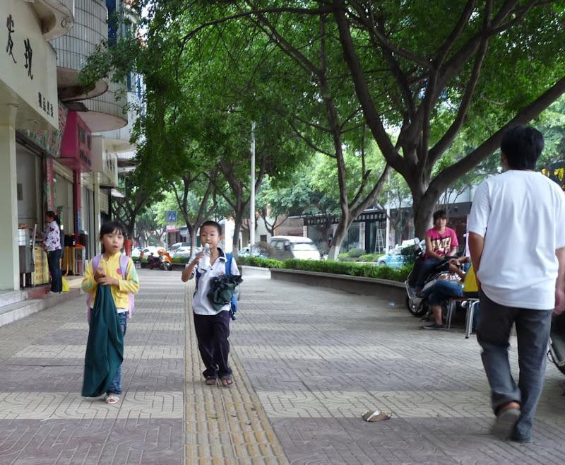 Chine.Yunnan Wen shan et BA MEI 1 - P1260812.JPG
