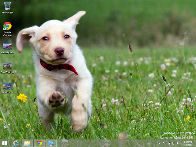 Playful-Puppies Theme in Windows 8.1