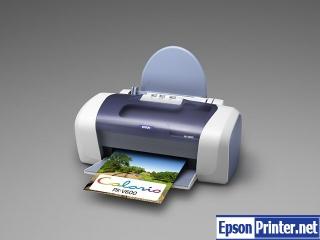 How to reset Epson PX-V600 printer