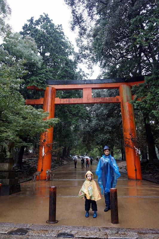 DSC07119 - Entering shinto shrine of war