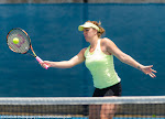 Anastasia Pavlyuchenkova - 2016 Brisbane International -DSC_2945.jpg