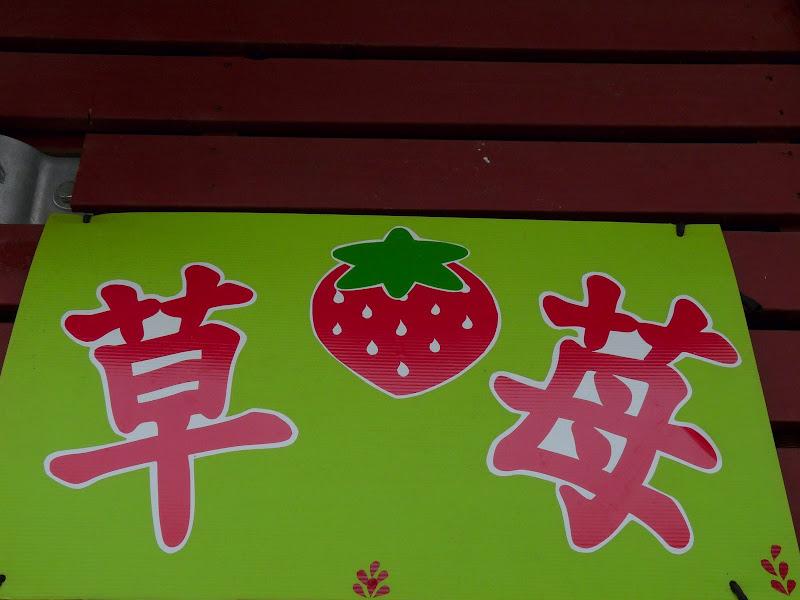 TAIWAN.Dans la région de MIAOLI - P1090548.JPG