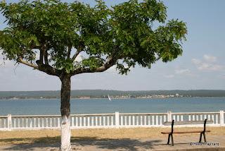 Inhambane (Mozambique)