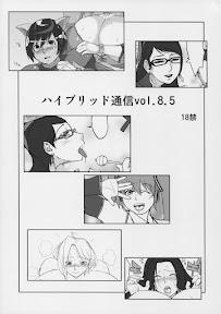 Hybrid Tsuushin Vol.8.5