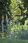 Corn Hill Decor