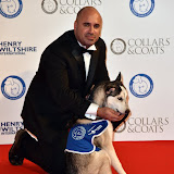 OIC - ENTSIMAGES.COM - TV VET Mark Abraham at the  Collars & Coats Gala Ball London Thursday 12th November 2015 2015Photo Mobis Photos/OIC 0203 174 1069
