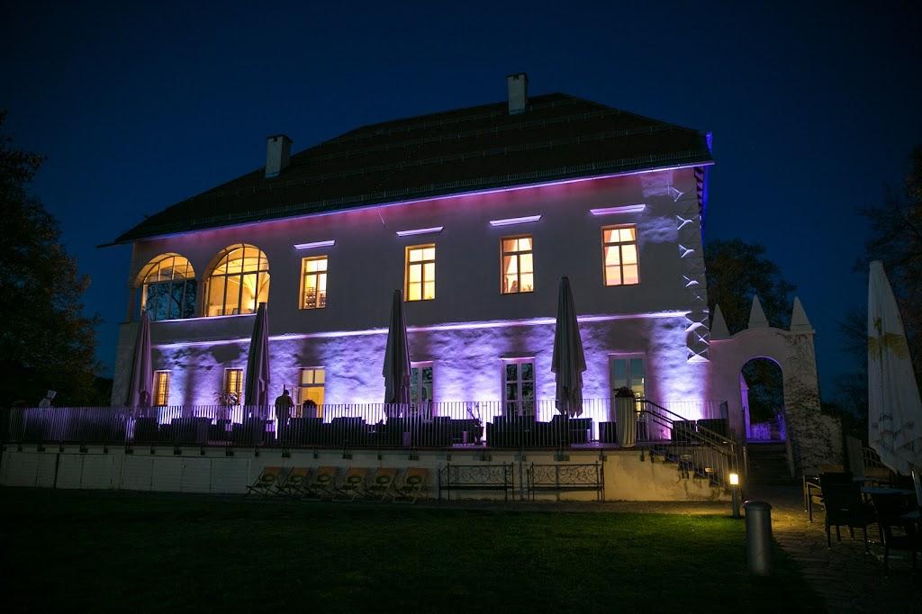 Schloss Ansicht Violett