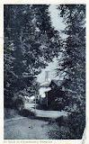 Un saluto da Castelnuovo - spedita il 15/09/1919