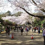 2014 Japan - Dag 7 - max-IMG_1848-0105.JPG