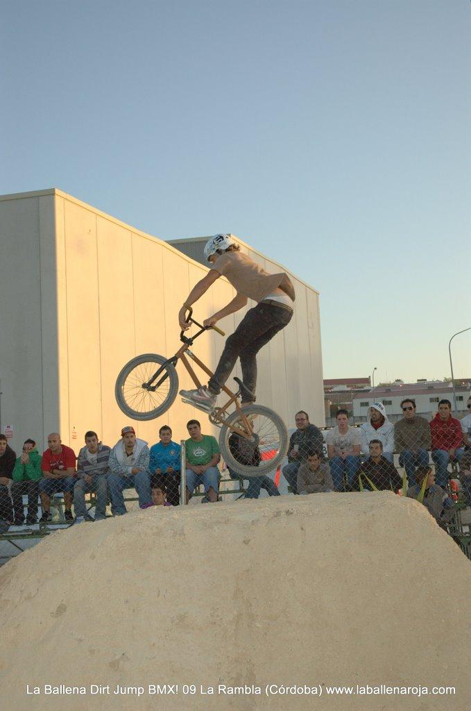 Ballena Dirt Jump BMX 2009 - BMX_09_0143.jpg