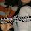 شاعر الليل الحكيم's profile photo