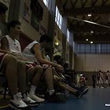 Basket 452.jpg