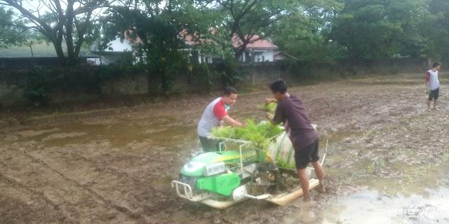 Pasca Pelatihan Magang Jepang, BBPP Binuang Bekali Keterampilan Pertanian Mumpuni