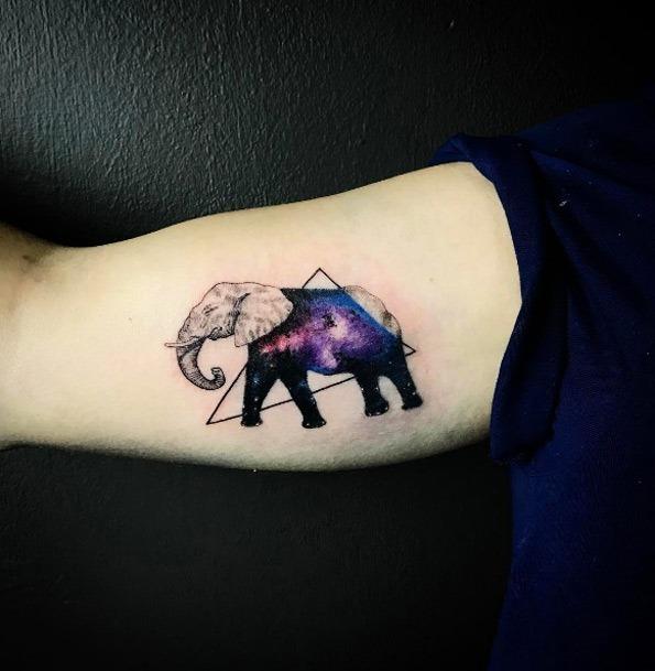 este_espaço_elefante