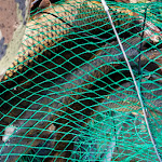 20150822_Fishing_Pyatygory_035.jpg