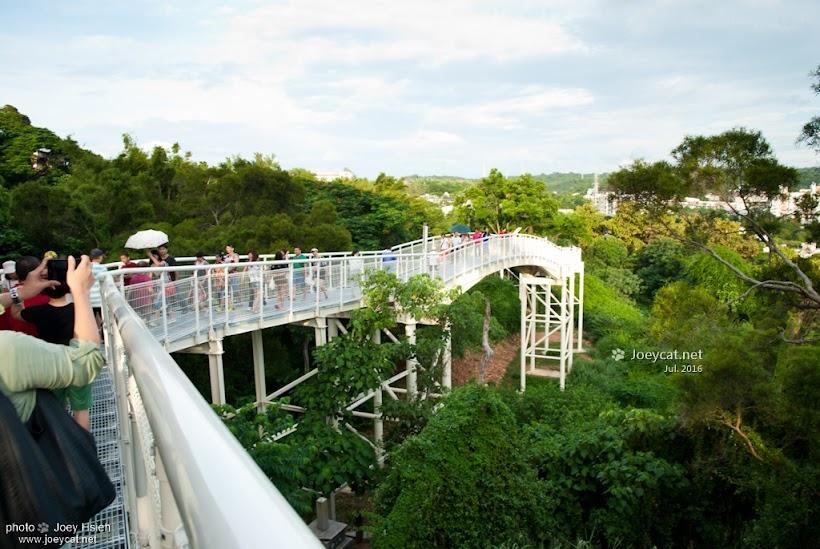 彰化 天空步道 八卦山 天空之橋