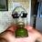 Erich Nakamoto's profile photo
