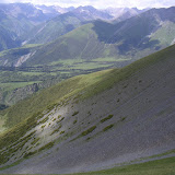 Éboulis à Corydalis gortschakovii, vallon de Gelley-Karagaï (vallée de Ak-Suu, au Nord de Semienovka), Kungey Ala Too, Kirghizstan, 5 juillet 2006. Biotope de Parnassius actius et Parnassius delphius (en haut). Photo : F. Michel