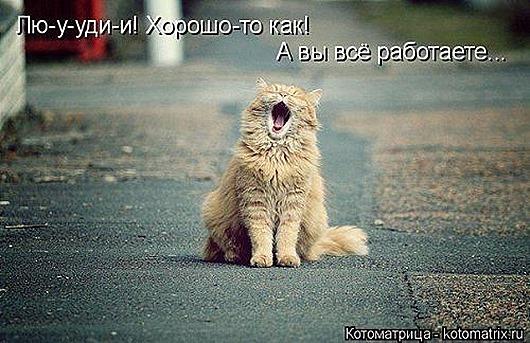 1406904248_novaya-kotomatrica-27