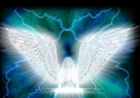 Amazing Angel, Angels 5