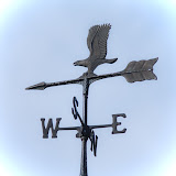 weather-vane-on-gazebo_MG_2477-copy.jpg