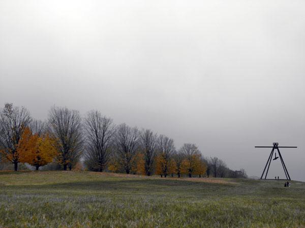 Winter Selections - IMG_9131.jpg