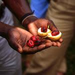 Spice Tour à Zanzibar (Tanzanie)
