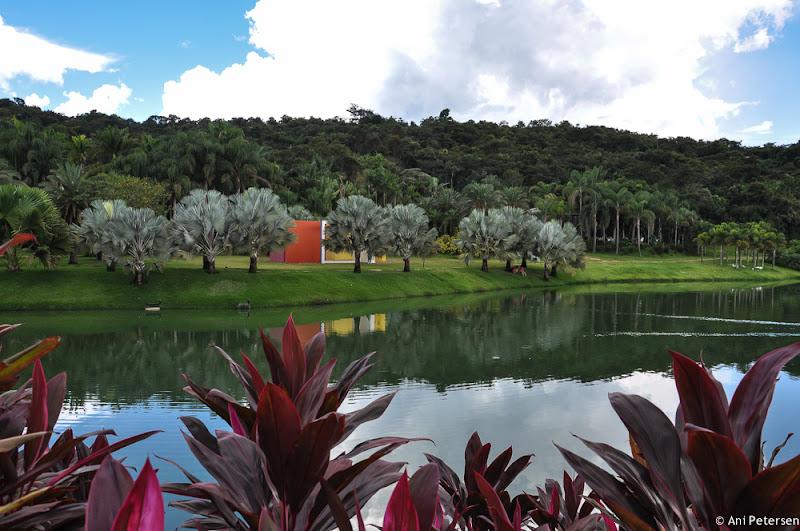 Instituto de Arte Contemporânea em Inhotim - Brumadinho, Minas Gerais. Fotos de Inhotim. Foto numero 8.