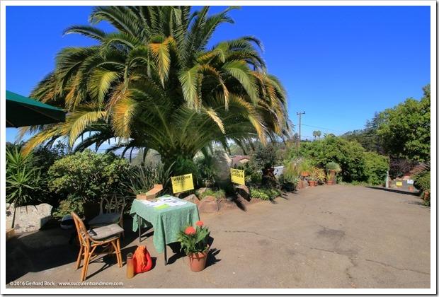 160730_Casa_de_Suenos_091