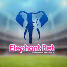 A Elephant Bet pretende recrutar para o seu quadro de pessoal dois (2) Agentes de Suporte ao Cliente (M/F) para Maputo