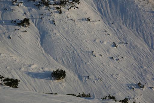 Tok snehov