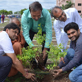 Gurukul Green Revolution (59).jpg