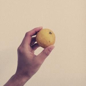 柚子湯 理由