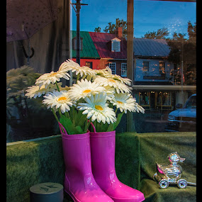 April Showers by Deborah Felmey - Flowers Flower Arangements ( window shopping, flowers, spring, april showers, boots )