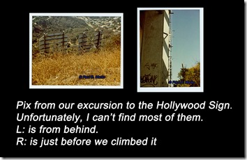 Hollywood Sign Collage D1a