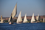 We flew to Aswan, Egypt and worked our way back north towards Cairo. In Aswan we did a felucca ride on the Nile.