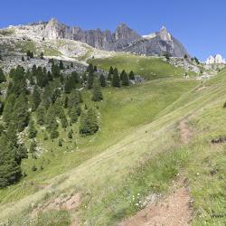 eBike Camp mit Stefan Schlie Murmeltiertrail 11.08.16-3359.jpg