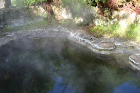 Steaming pond, Rotorua Thermal Area