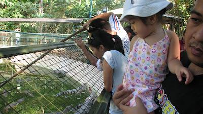 Zoobic Safari Subic Bay Zambales [March 2009] 19