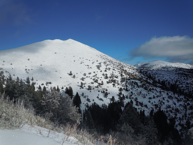 Moore Mountain in winter